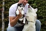 Siberische-Husky-puppy-reu-2215-2.JPG