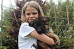 german_shepherd_puppies_9183.jpg